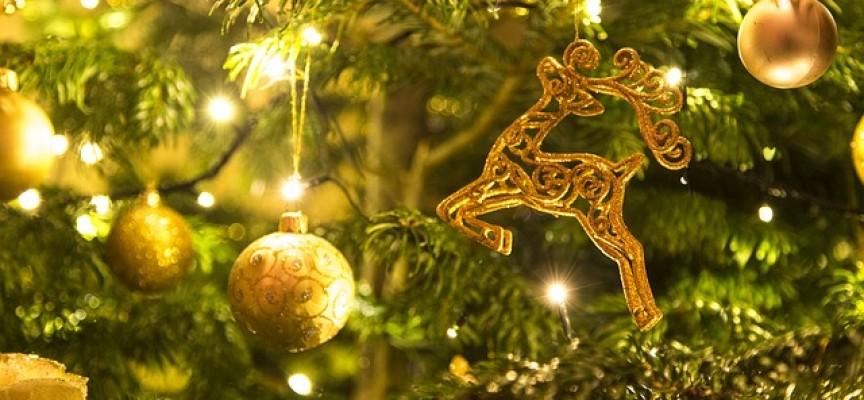 Ротари клуб – Пазарджик ви желае светли празници и успешна 2018 г.