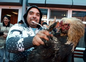 Ромите посрещнаха Банго Васил