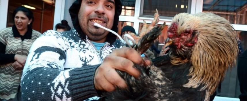 Традиции: Банго Васил е ромският Дядо Коледа и Нова година едновременно