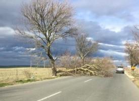 Днес и утре: Силни ветрове и гръмотевични бури ще бушуват в страната, какво да се прави?