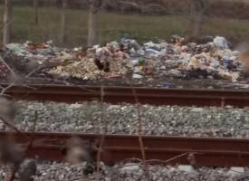 Незаконно сметище тормози Синитово