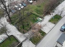 """Две дървета паднаха на ул. """"Болнична"""""""