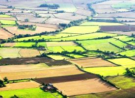 До 15 февруари: Регистрираме правните основания за ползване на земеделски земи