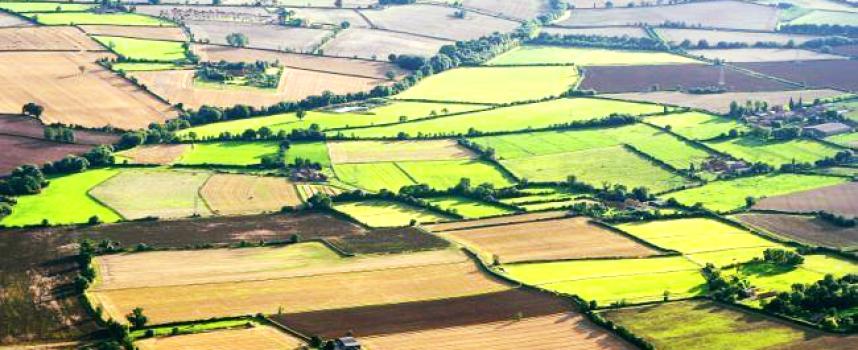 Земеделските стопани вече могат да заявяват онлайн еднодневни договори и за 4 часа