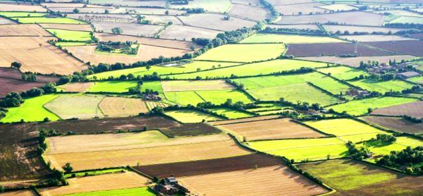 Земеделците подават заявления за компенсиране на загубите от природни бедствия