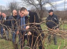 Областен и заместници почетоха Трифон Зарезан в различни населени места на областта