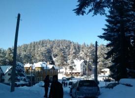 Петко Петков: Предстоят процедури по изключването на Атолука от държавния горски фонд