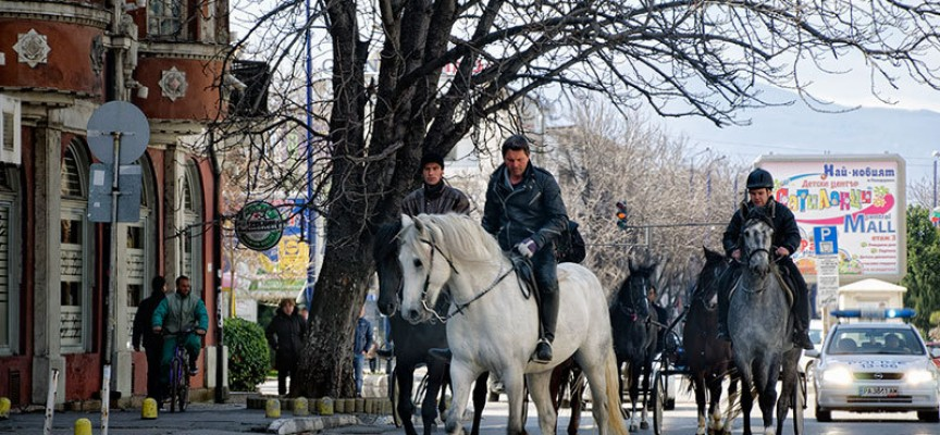 "На Тодоровден: Расови жребци дефилират утре по бул. ""България"""