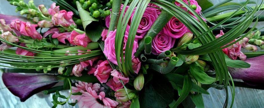 Магазините за цветя очакват 8-и март с рози, циклами, зюмбюли и екзотични растения