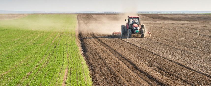 За производителите: Какво трябва да знаете за субсидирането на земеделци и животновъди?