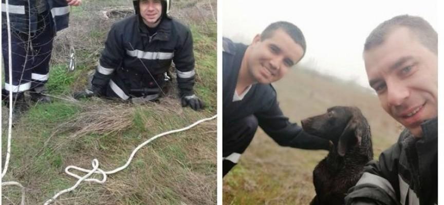 Септемврийските огнеборци спасиха куче, паднало в шахта