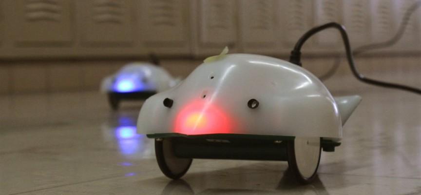 УТРЕ: Роботчето Финч пристига в пазарджишката библиотека