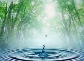 """В 16 ч. : Обявяват наградите от """"Водата –живот, емоция, стихия"""""""