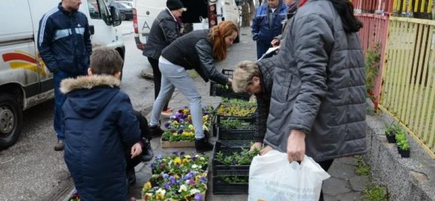УТРЕ: Предаваш смет, получаваш цветя и дръвчета, виж къде в Пазарджик и още 20 села