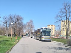 30автобуси