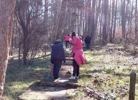 Стрелча: Събират храсти и треви до контейнерите за смет