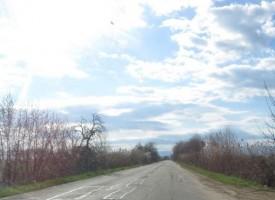 Знаци се крият в шубраци по пътя Пазарджик – Ветрен