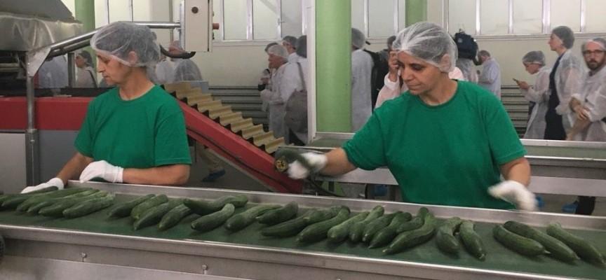 Евроземеделски министри хрупаха екокраставици в Звъничево