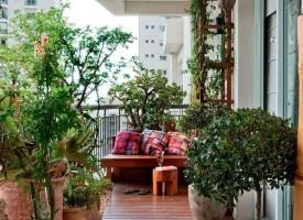 От утре: Включете се в конкурс за най-красив балкон или градина