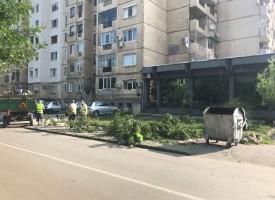 Община Пазарджик стартира августовско почистване, включи се и ти