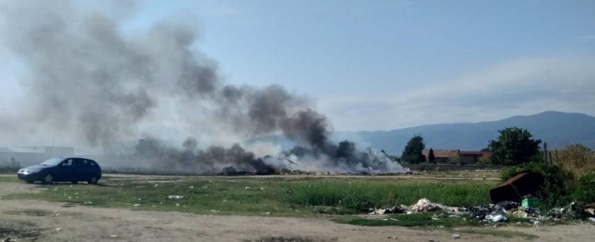 Читателска връзка: Пушек се стели край Ковачево, обгазява Звъничево
