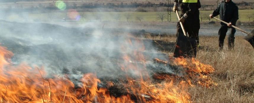 Сухи треви пламтяха в областта, пожарникари спасиха 22 кошера, зайци и птици край Велинград
