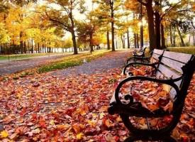 Нощ и ден се изравняват, лягаме си през лятото и се будим през есента