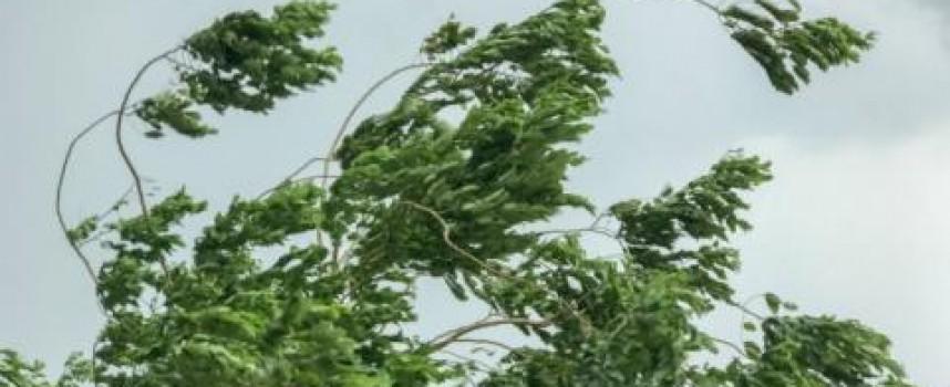 Вятърът в Пазарджик е бил най-силен днес, 112 км/час