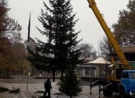 Пещера: Тържествата за Коледа започват на седми декември