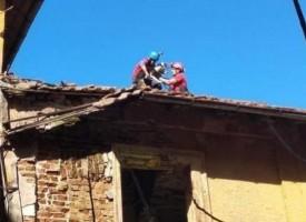Алпинисти свалиха бездомни кучета от покрива на училището във Виноградец