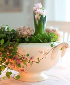 21пролетни цветя4