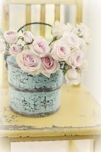 21пролетни цветя8