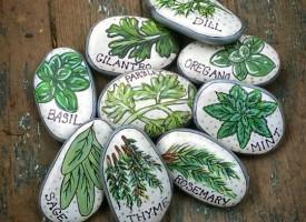 Свободно време: Накарайте децата да изработят маркери за градината с подправките