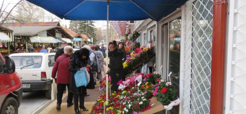Пет лева за роза в деня на Свети Валентин