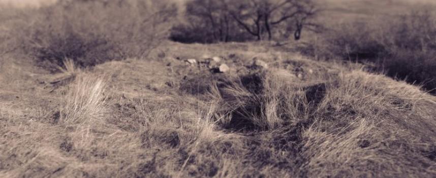 Иманяри продължават да ровят бошулско-величковските възвишения