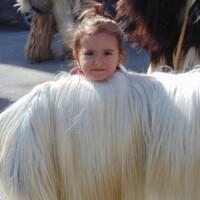 В неделя: Село Варвара отново събира стотици кукери отблизо и далеч