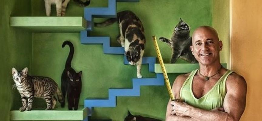 Идеи за дома: Направете къщички и катерушки за котките