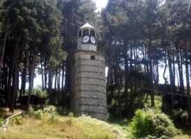 Две момчета са задържани за кражба в Костандово и Дорково