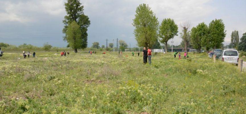 """Адвокатите засадиха 10 дъбчета в местността """"Писковец"""""""