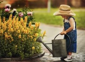 За душата: 10-те тайни на щастието, които могат да се практикуват всеки ден