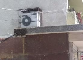 """Рояк пчели чака новия си стопанин на бул. """"България"""" в Пазарджик"""