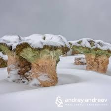 03гъби-сняг