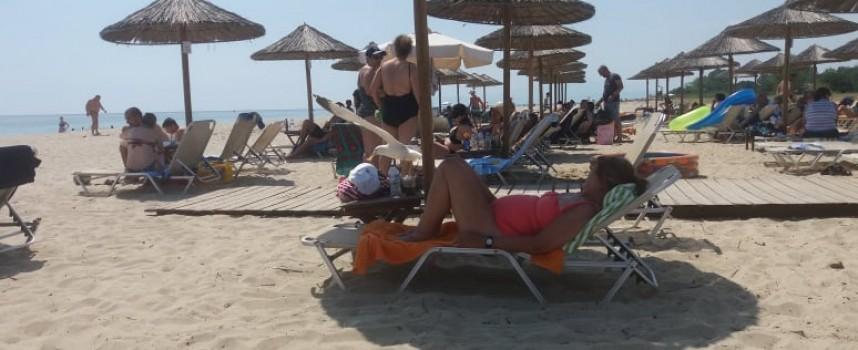 Крадлив гларус весели един от плажовете в Керамоти