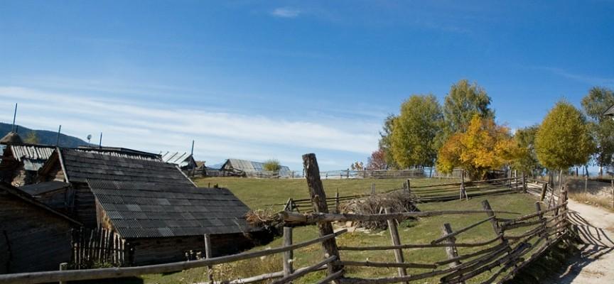 Кметът на Медени поляни отрязал тока на бедно семейство, не гласували за ГЕРБ