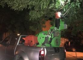 Ако имате гъсеници по дърветата в квартала, сигнализирайте на 034 / 96 96 96
