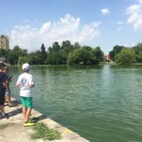 """Пазарджик е обявен за световен център на моделните спортове, в неделя е стартът на Световното за купа """"Теншок"""""""