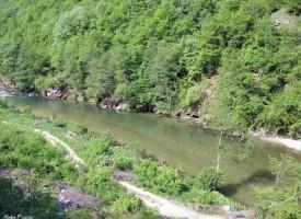 Добрата новина: Пловдивски пожарникари измъкнаха две деца от река Въча