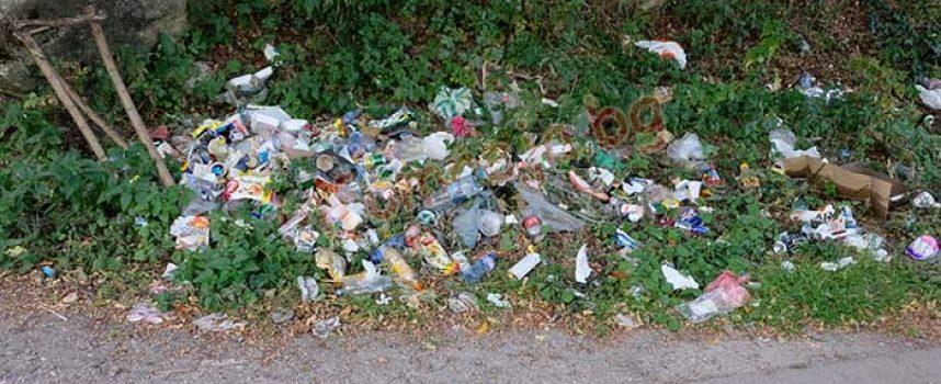 """УТРЕ: Пазарджик се включва в почистването, помогнете в района на """"Писковец"""" и около моста """"Атлантик"""""""