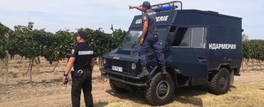 Бошуля: Отличен за полиция и жандармерия, не изчезна нито чепка грозде