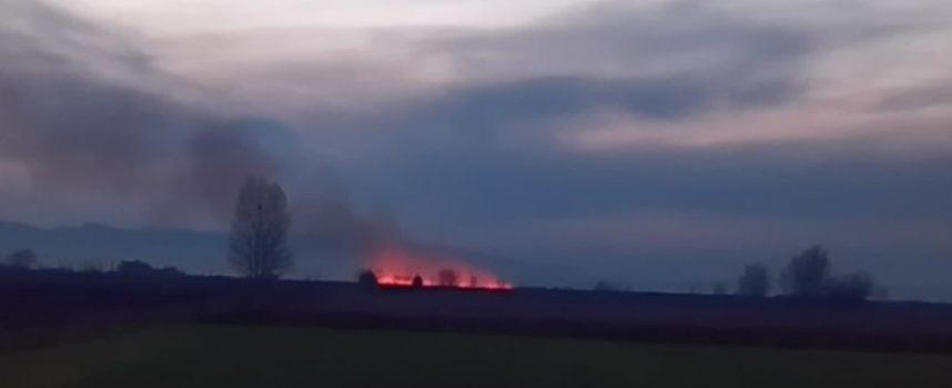 Читателска връзка: Стърнища от оризища край Пищигово горят цял ден